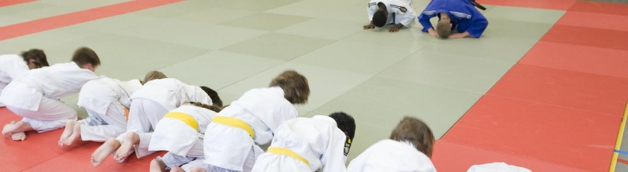 Judolessen in heel Amsterdam